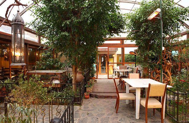 Garden Restaurant Hotel Niky Restaurants In Sofia