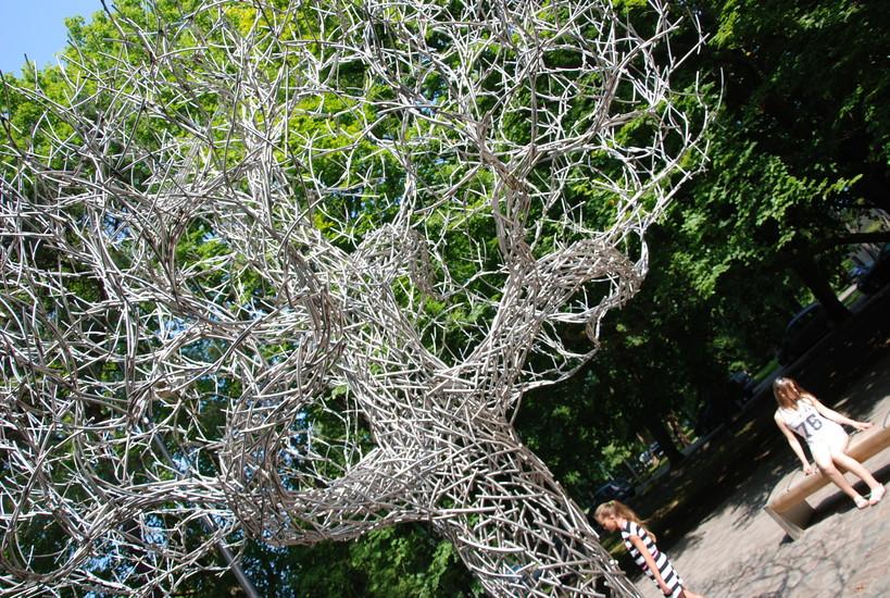 Līvi Ghost Tree Sightseeing Liepaja