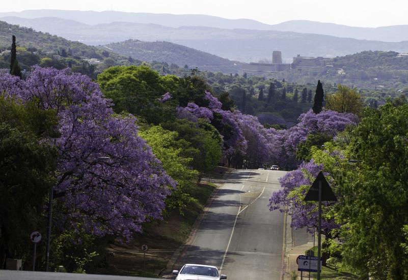 Visiting Pretoria South Africa S Capital City