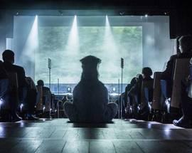 Tartu Black Nights Film Festival PÖFF