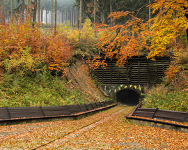 'Riese' Complex & the Legend of the 'Nazi Gold Train'