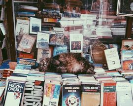 HeadRead Literary Festival