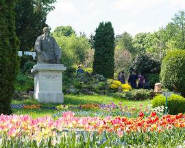 Alexandru Borza Botanic Garden