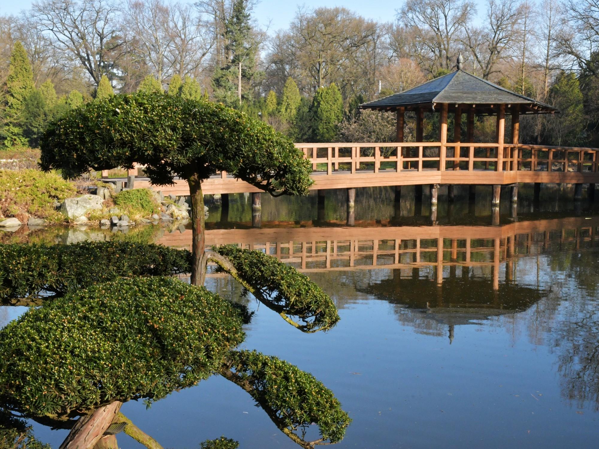 Japanese Garden | Leisure | Wroclaw