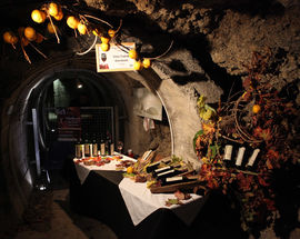 Wine Route in the Tunnels under Kranj