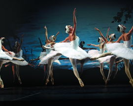 Swan Lake in Mikhailovsky
