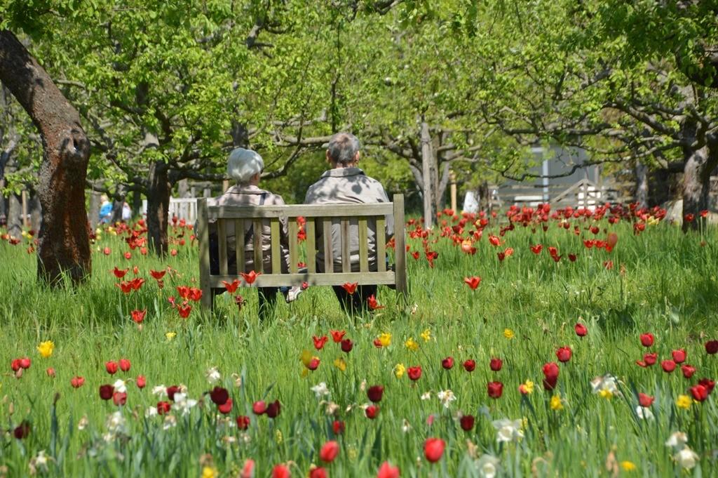 Britzer Garten Sightseeing Berlin
