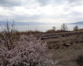 Lake Prespa & Golem Grad