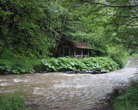 Ravna Reka