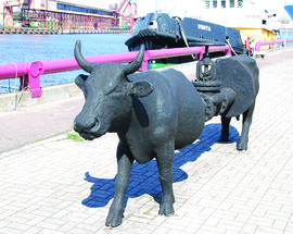 Ventspils Cow Parade