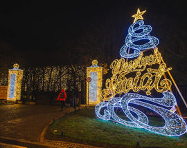 Christmas Lights in Oliwa Park