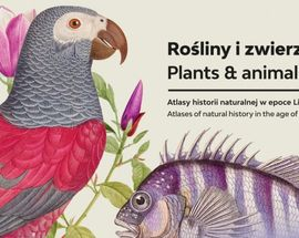 Plants & Animals. Graphic Representations of Flora & Fauna in the Linnaeus Age
