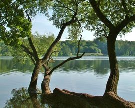 Poznań's Lake Rusałka