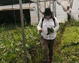 JoburgPlaces Urban Farming Tour