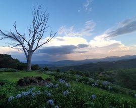 Road to Kruger – Tzaneen, Magoebaskloof and Haenertsburg