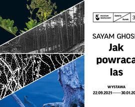 Sayam Ghosh: Jak powraca las