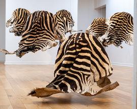Art exhibitions at FNB Art Joburg Open City 2021