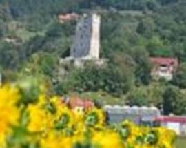 Šalek Castle