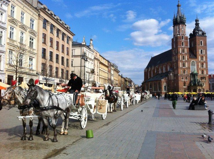 Main Market Square  Krakw Sightseeing  Krakow