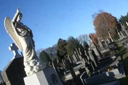 Natuur & Parken & Begraafplaatsen