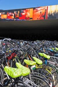 Orphaned bikes