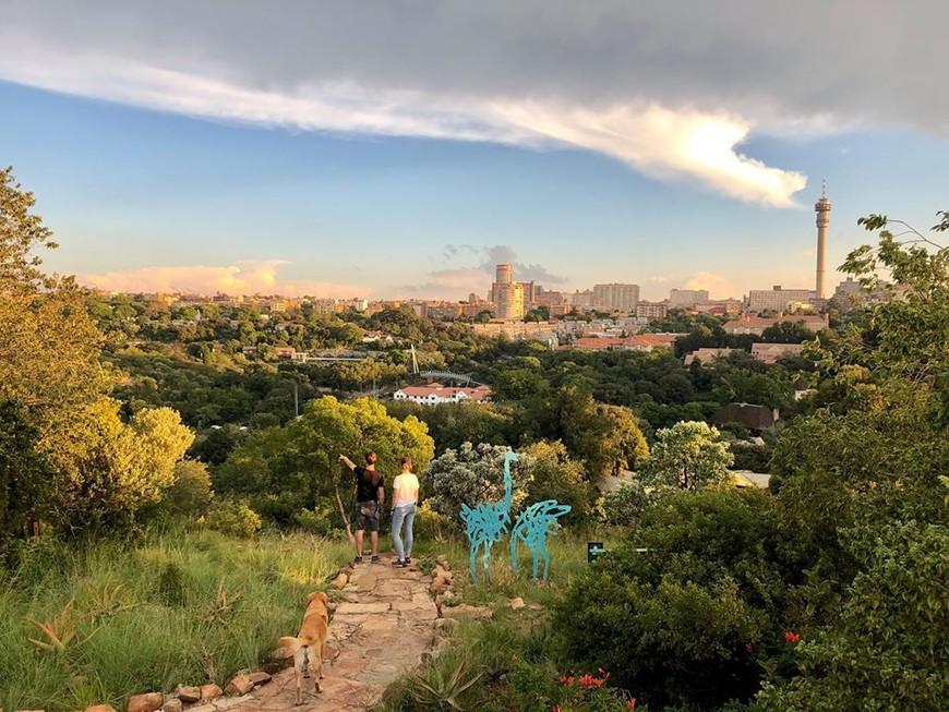 The Wilds, Johannesburg