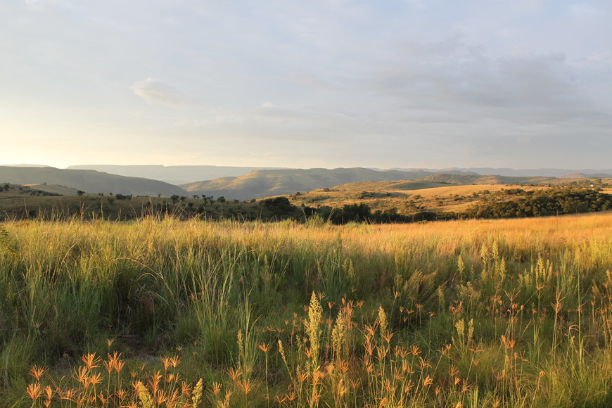 Golden countryside views from Maropeng Boutique Hotel in the Cradle of Humankind