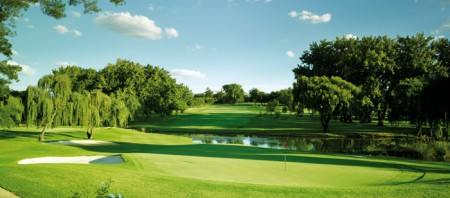 Teeing Off in Joburg: A Golfer's Guide