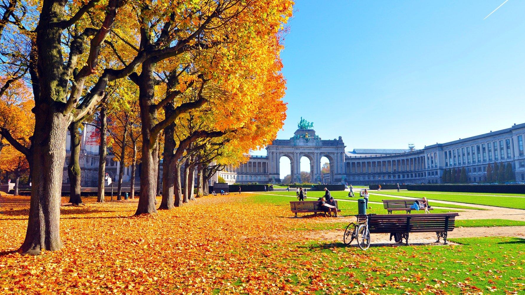 © Eduard Wichner Shutterstock.com autumn scenery in park golden trees