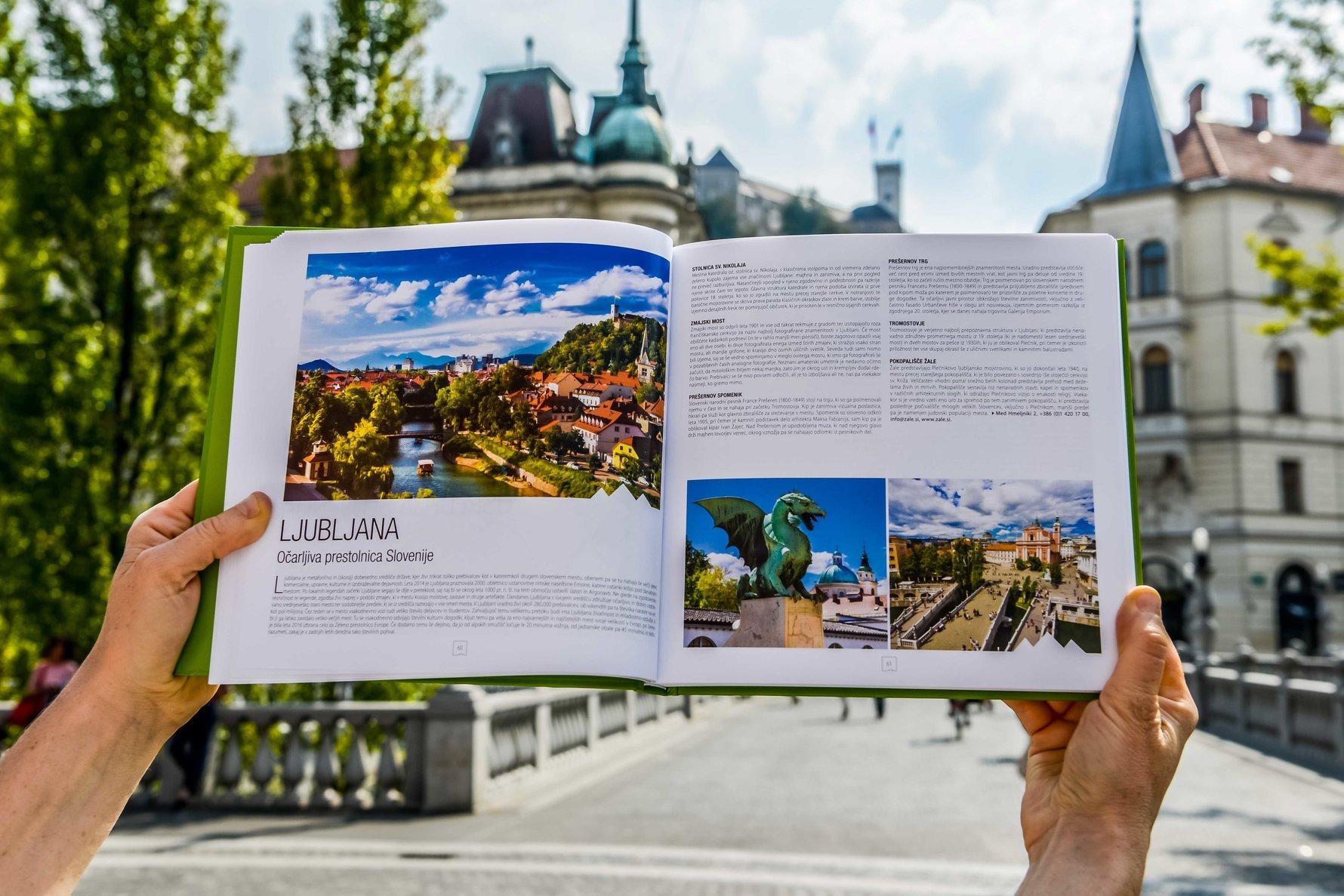 Knjiga Slovenija ostani doma