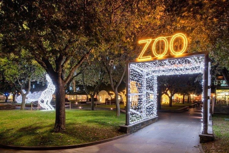Festival of Lights at Joburg Zoo